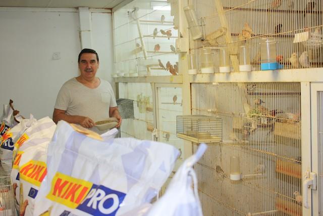 foto_aviario